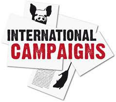 logo international campaigns