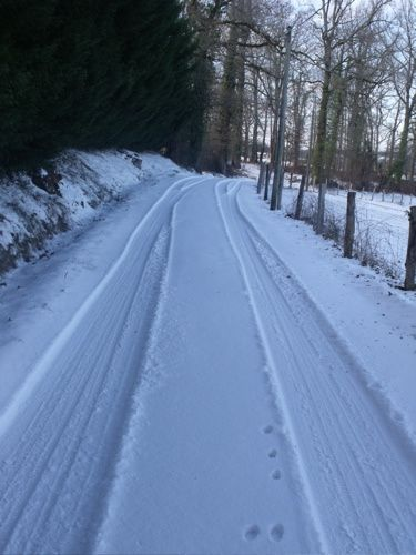 Jour-de-neige--7-Fevrier-12-017.jpg