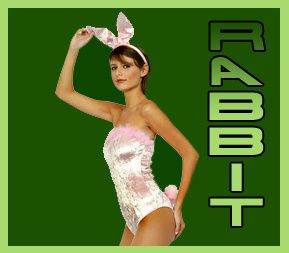 RABBIT FINDER 2
