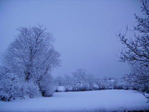 champ-devant-neige.jpg