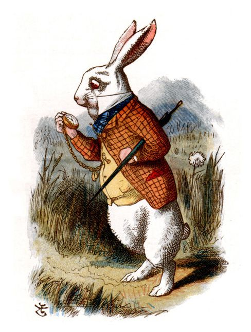 White-rabbit-John-Tenniel.jpg