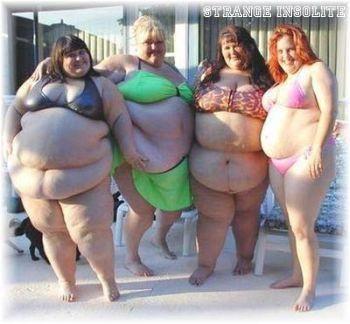obese-4femmes 1831e3