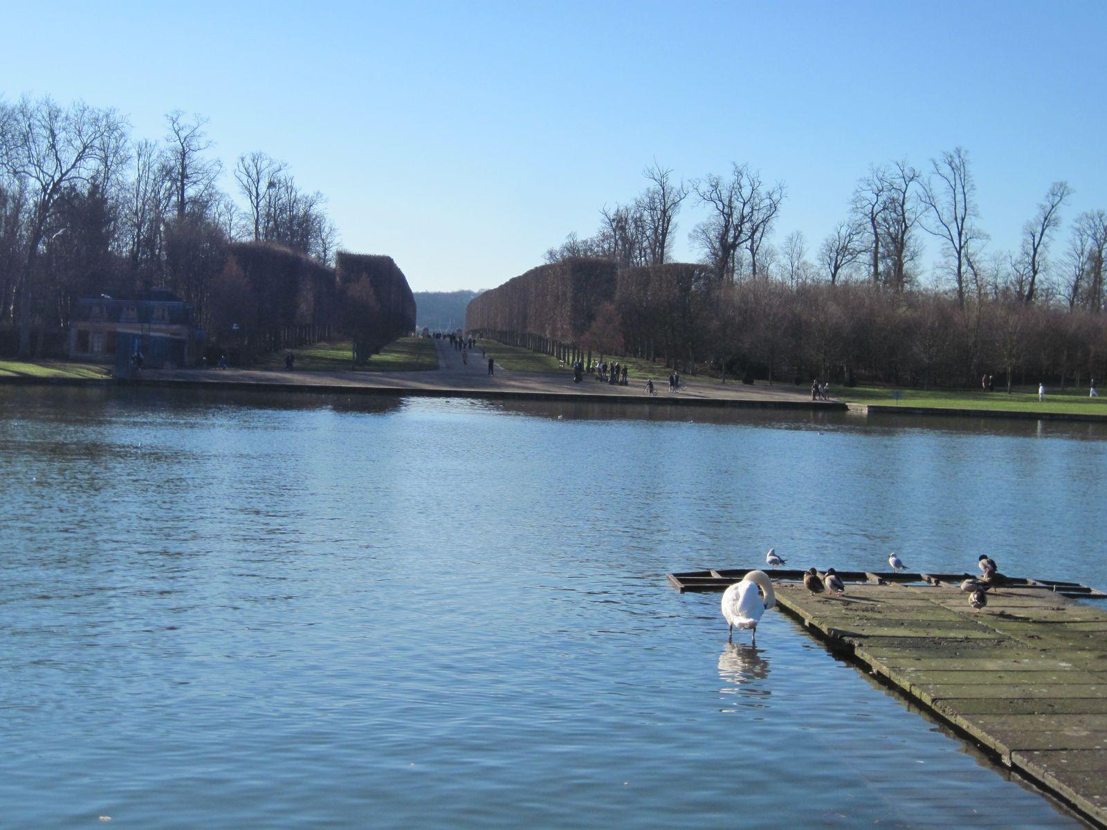 """Promenade """"libre de droits"""" le 16 janvier 2011 dans le parc du Château accessible au public gratuitement."""
