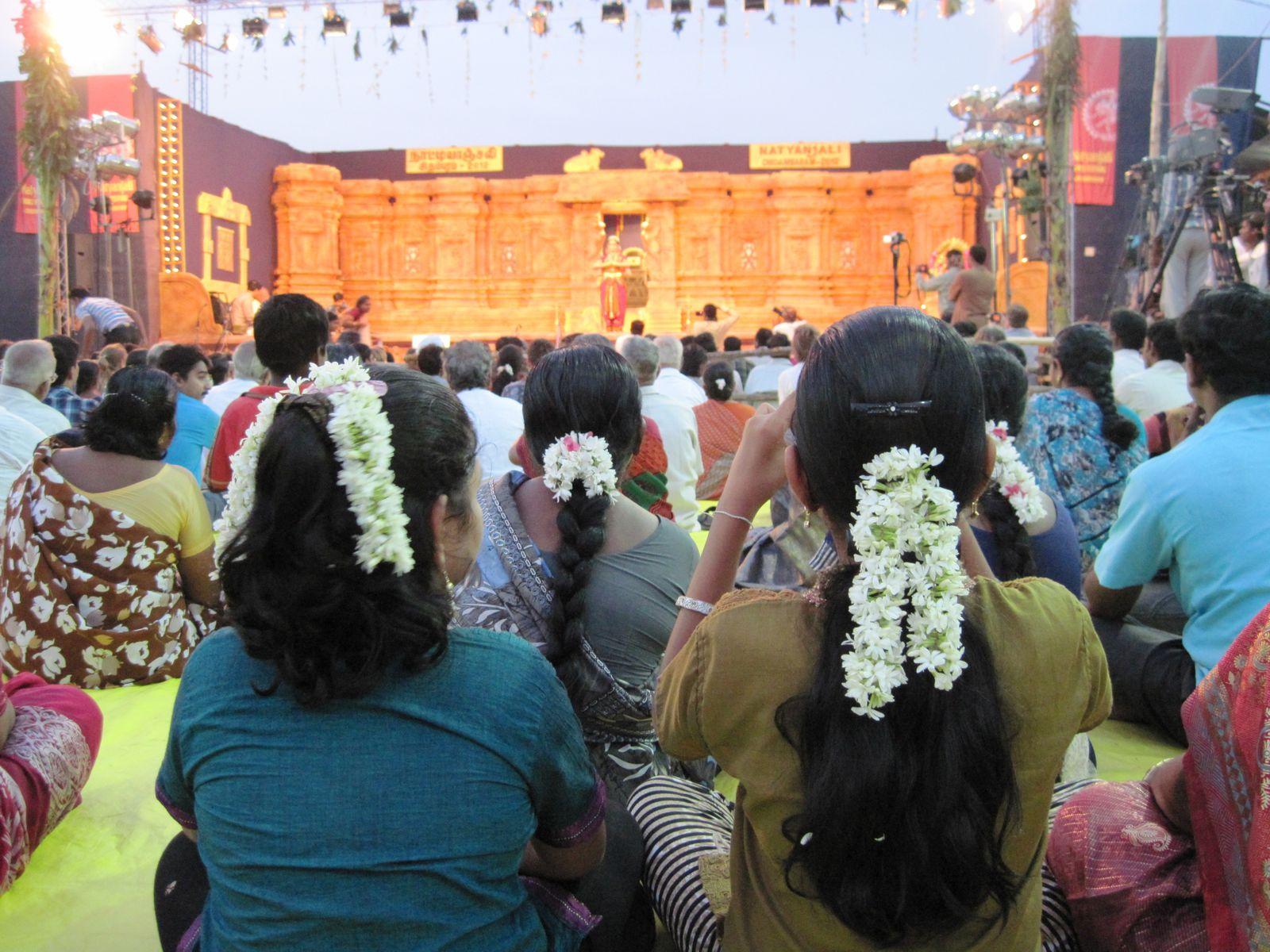 Scènes de la vie de tout les jours Inde 2012