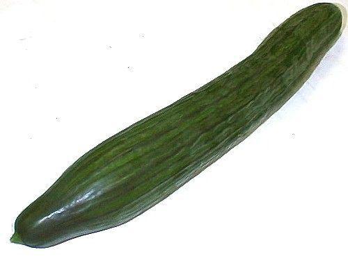 Concombre_Long_1_