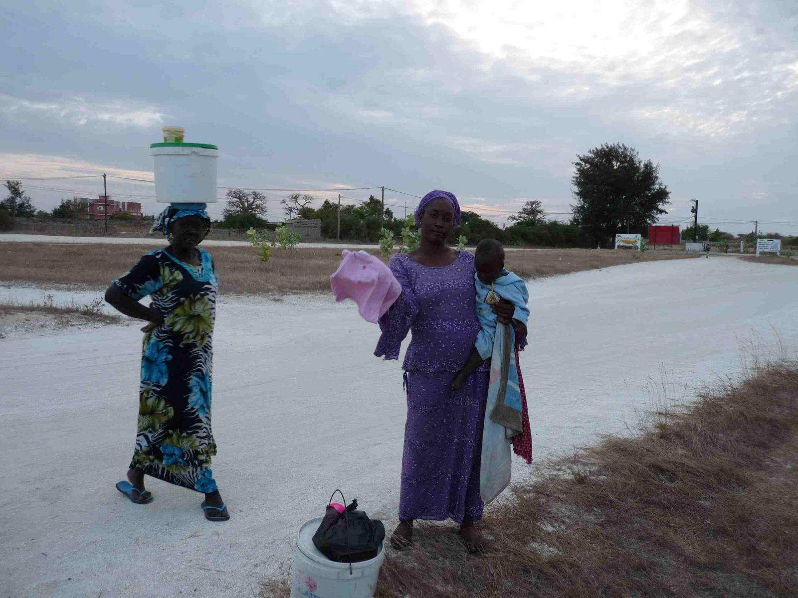 Maroc, Mauritanie, Sénégal...