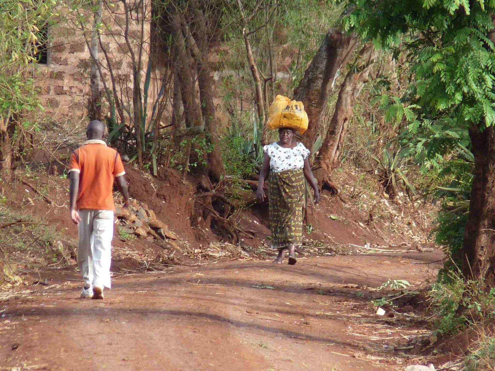 Album - 13-Kenya-Tanzanie-Zambie