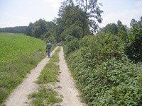 Chemins3