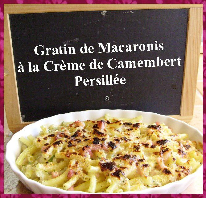 gratin de macaronis la cr me de camembert persill e la cuisine ma passion. Black Bedroom Furniture Sets. Home Design Ideas
