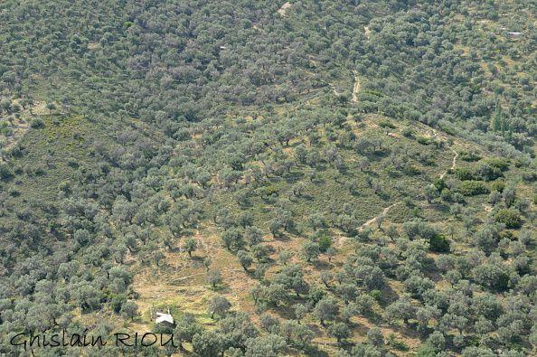 lesvos-04.05-10.05.2012 1154