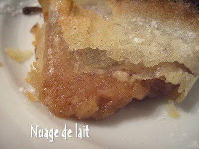 croustillants_aux_pommes_025