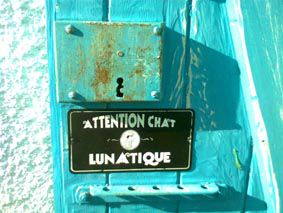 CHATLUNATIQUE
