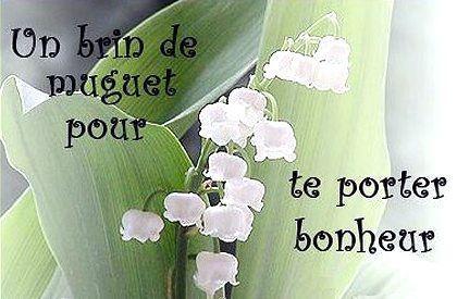 1er mai les petits plats de patchouka - Photo de brin de muguet porte bonheur ...
