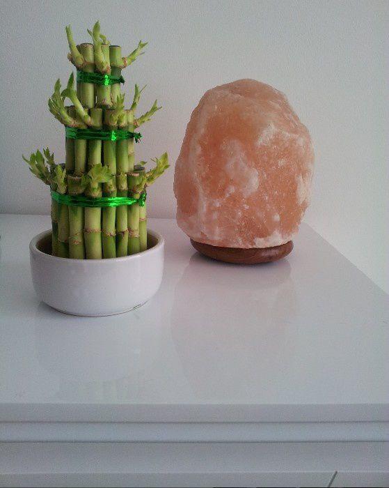 S 39 offrir une pyramide de bambous pour le nouvel an for Offrir un miroir signification