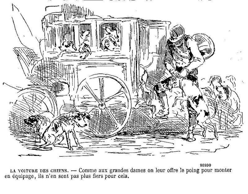 Dessins en lien avec l'article l'attelage et dessins satiriques au 19°
