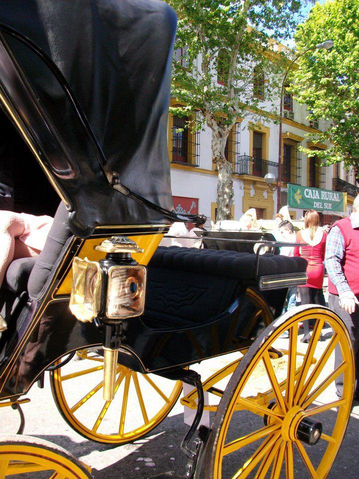 Photos de Maria Delgado en lien avec l'article Féria Séville 2012
