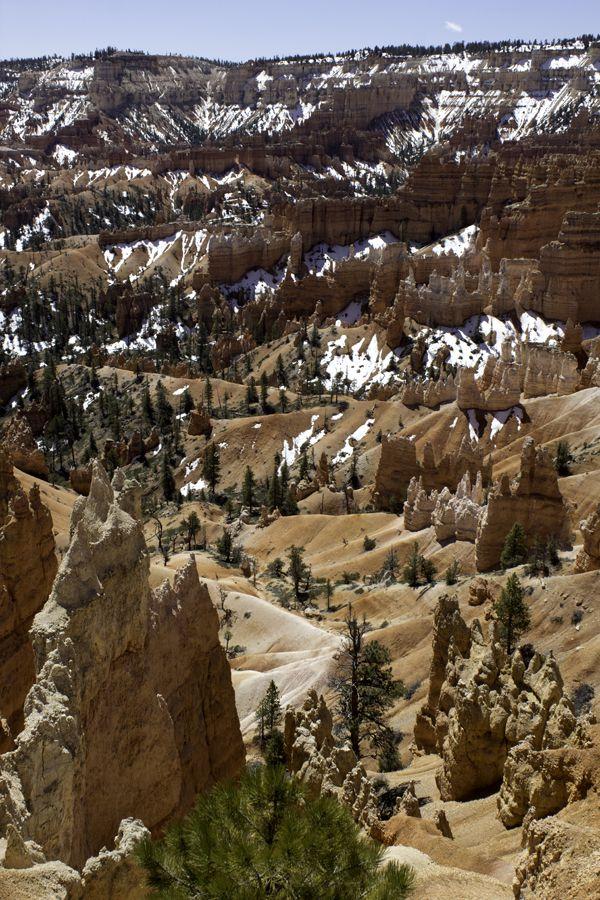 Bryce-Canyon 2718
