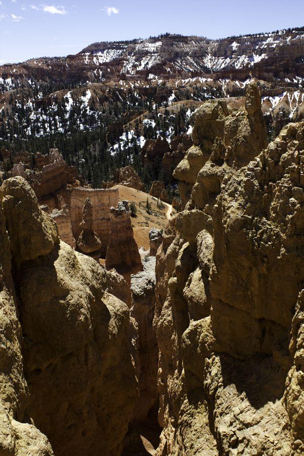 Bryce-Canyon 2737
