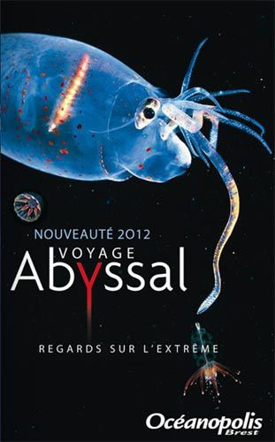 Voyage abyssal
