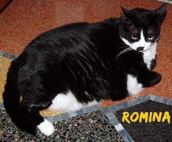 Romina15.JPG
