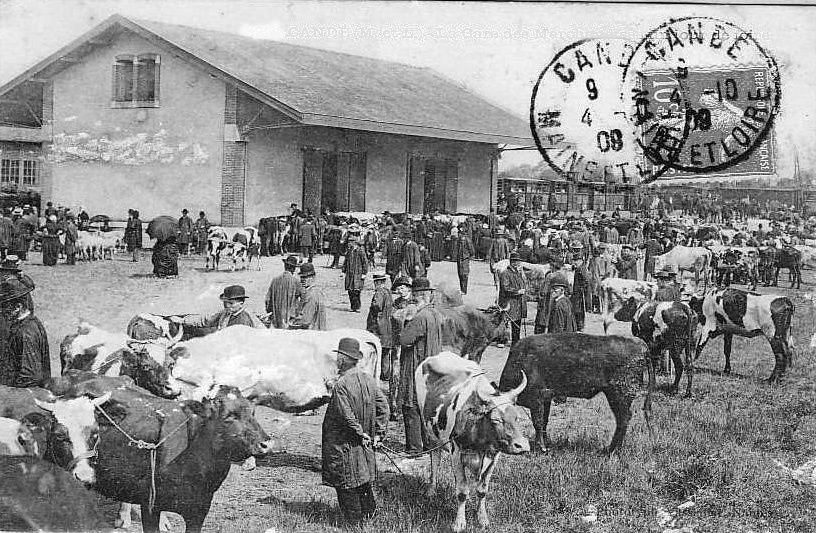 Album - Vie à la ferme, du temps passé