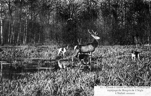 Album - la ville de Compiegne (Oise), la chasse à courre