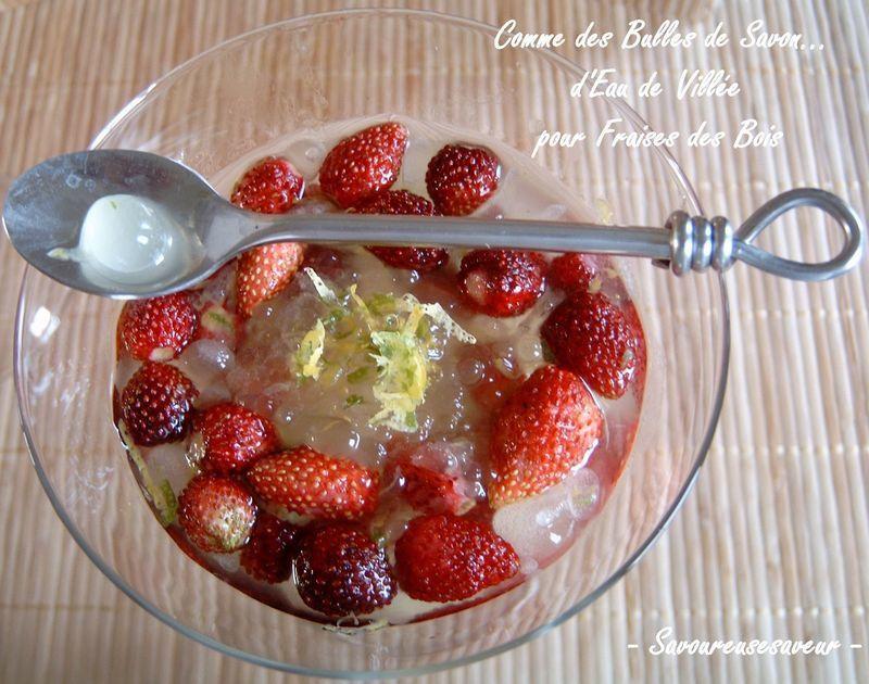 fraisevill_e11