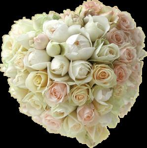 couer-de-roses.png