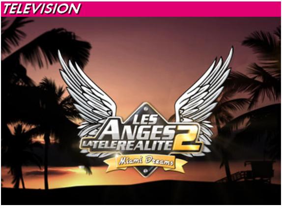 logo les anges de la télé réalité miami-copie-1