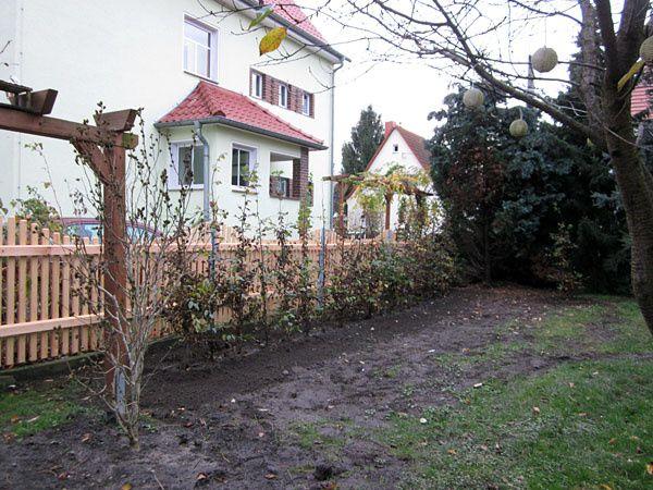 Garten3-0689.jpg