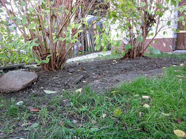 Garten3-0744.jpg