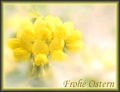 froheostern01