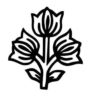 fleurs-indiennes.png