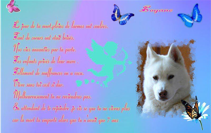 Poeme Pour Soso Le Blog De Aurore Trebujais