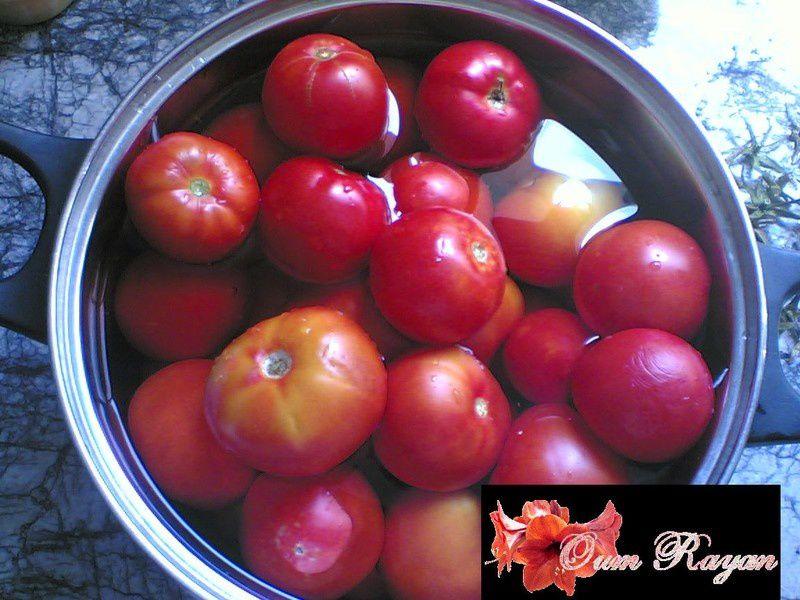 concerve_de_tomate2
