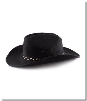 Chapeau de cow-boy : 12,95 €