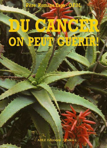 Du-cancer-on-peut-guerir---Pere-Zago---Moyen.jpg