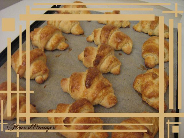 Croissants 6814 copie