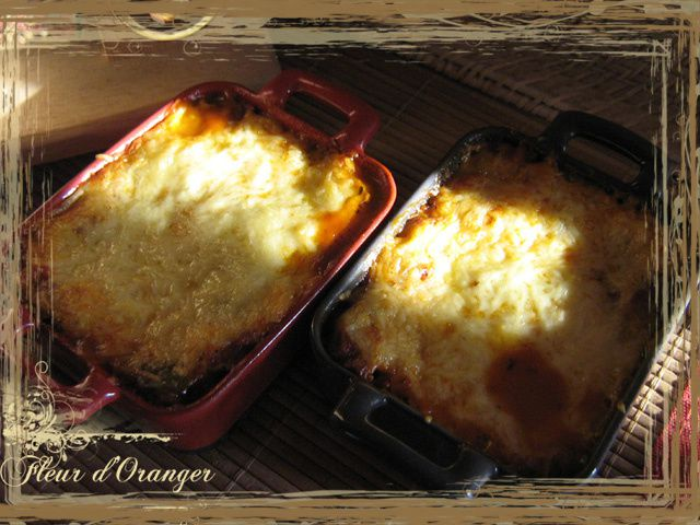 lasagne 7904 copie
