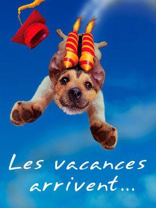youpi-les-vacances-arrivent-116061.jpg