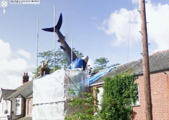 insolite-GSV--attaque-de-requin-copie-1.JPG