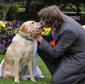 mariage zoophile mariagepourtous