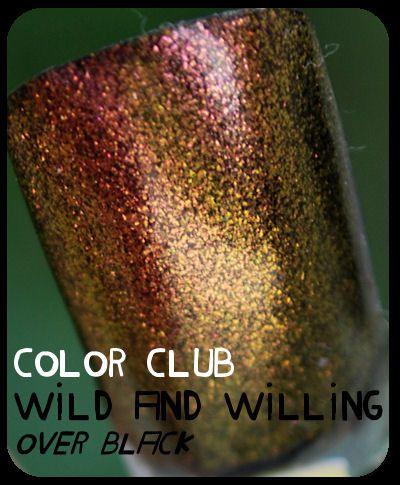 colorclub 049