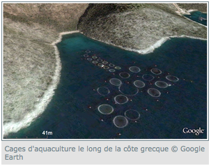 aquaculture-google-earth