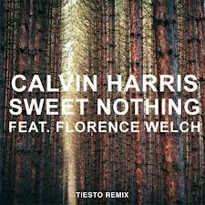 Calvin-Harris-feat.-Florence-Welch---Sweet-Nothing--Tiesto-.jpg