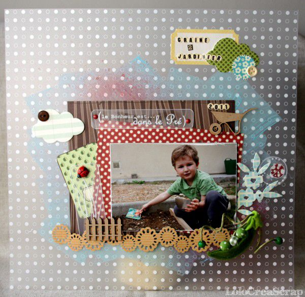 LauraPack-Swilrcards 6818