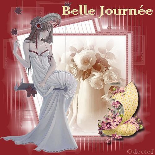 Belle-journee-10112010.jpg