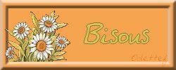 Mini bisous 30032010