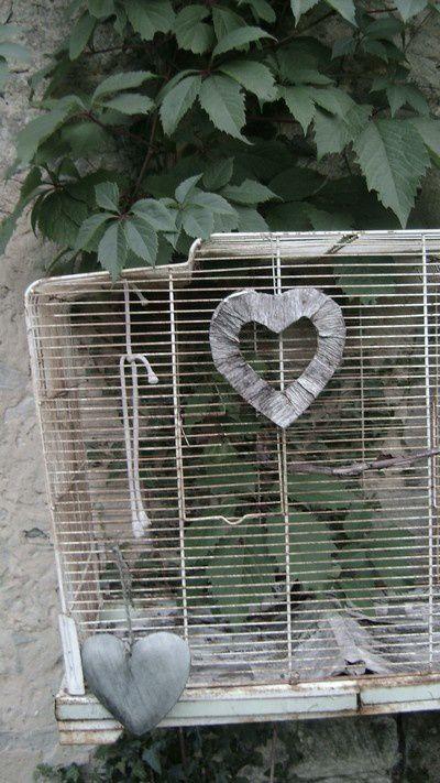 cage-a-oiseau.jpg