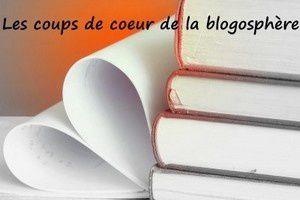 coeur-vs3.jpg